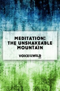 Meditation: the Unshakable Mountain