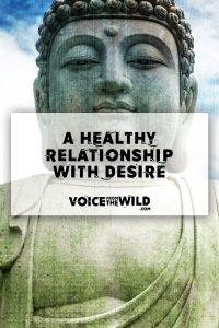 Addiction, the Buddha and a Healthy Relationship with Desire
