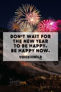 Don't wait for the New Year to be Happy. Be Happy Now.