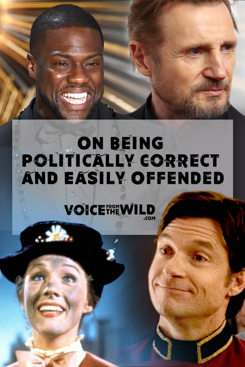 On Being Politically Correct and Easily Offended