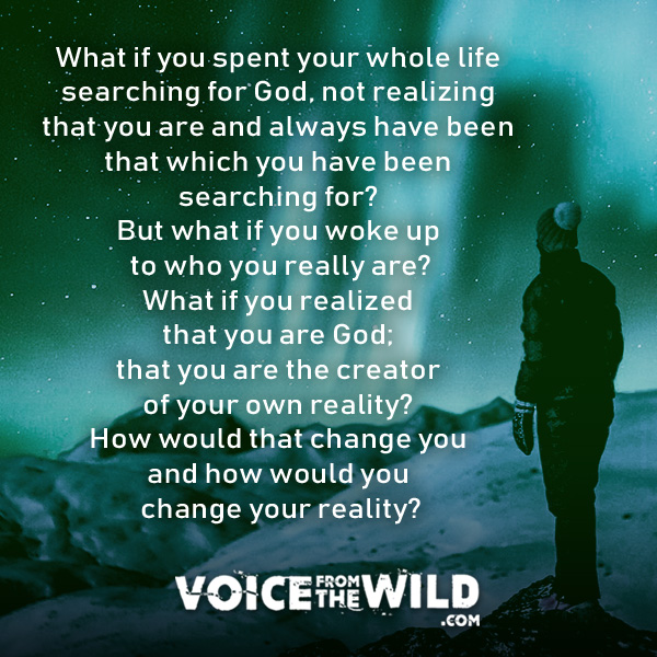 What if you spent your whole life searching for God, not realizing that you are and always have been that which you whave been searching for? #god #spirituality #voicefromthewild
