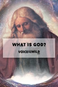 What is god? Voice from the Wild