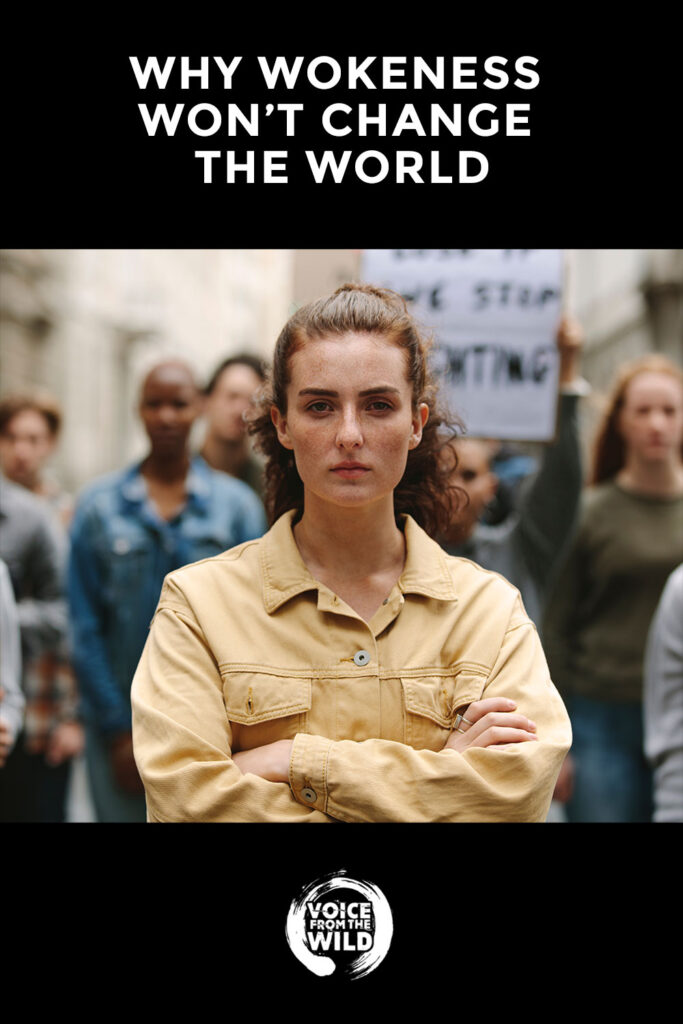 Why Wokeness won't Change the World